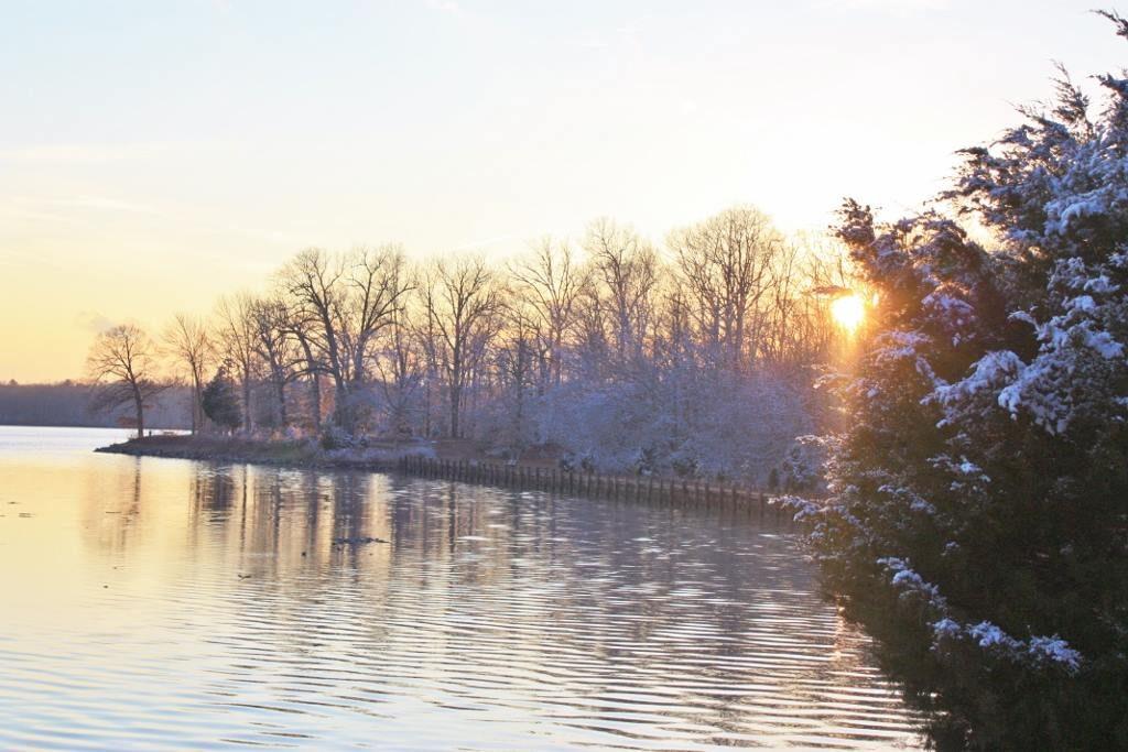 Martinak in the Wintertime