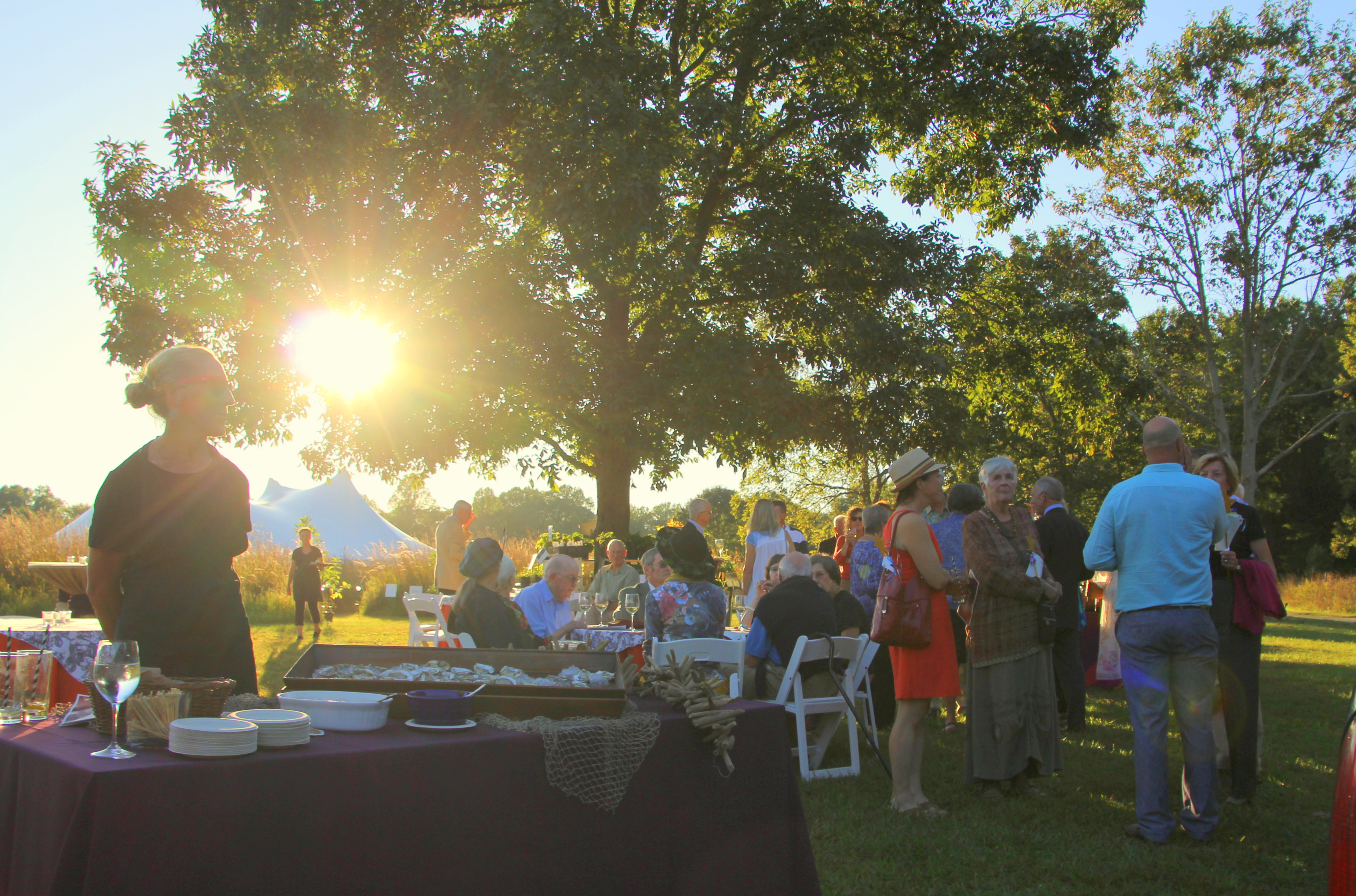 Welcome Fall at Magic in the Meadow Gala: An Equinox to Remember