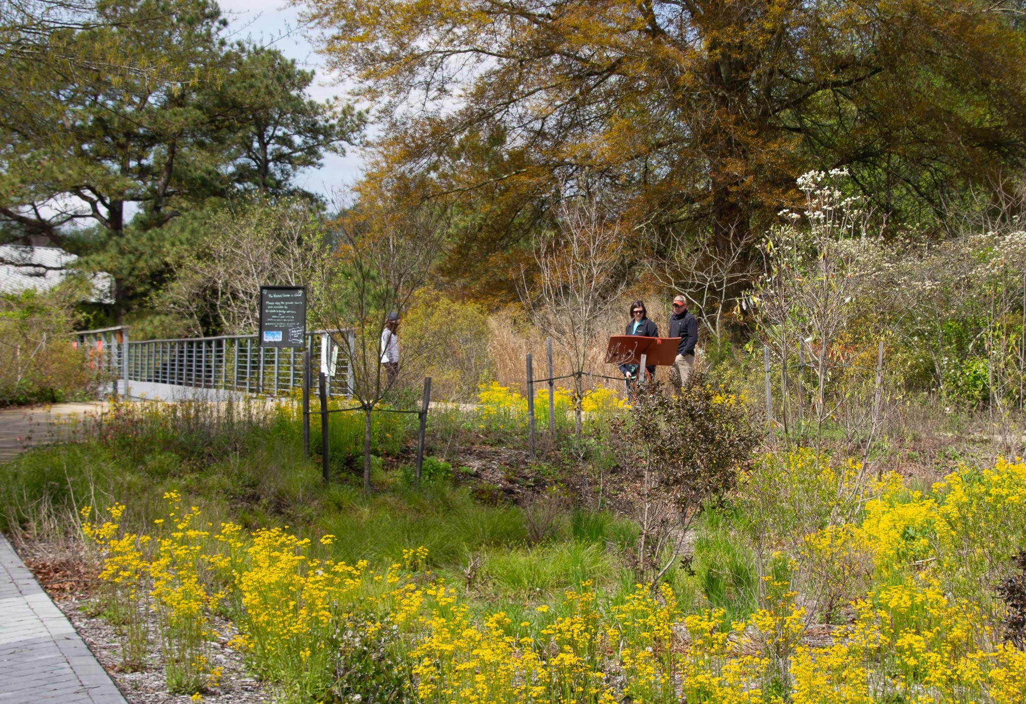 Adkins Arboretum's Spring Membership Drive Now Through May 30