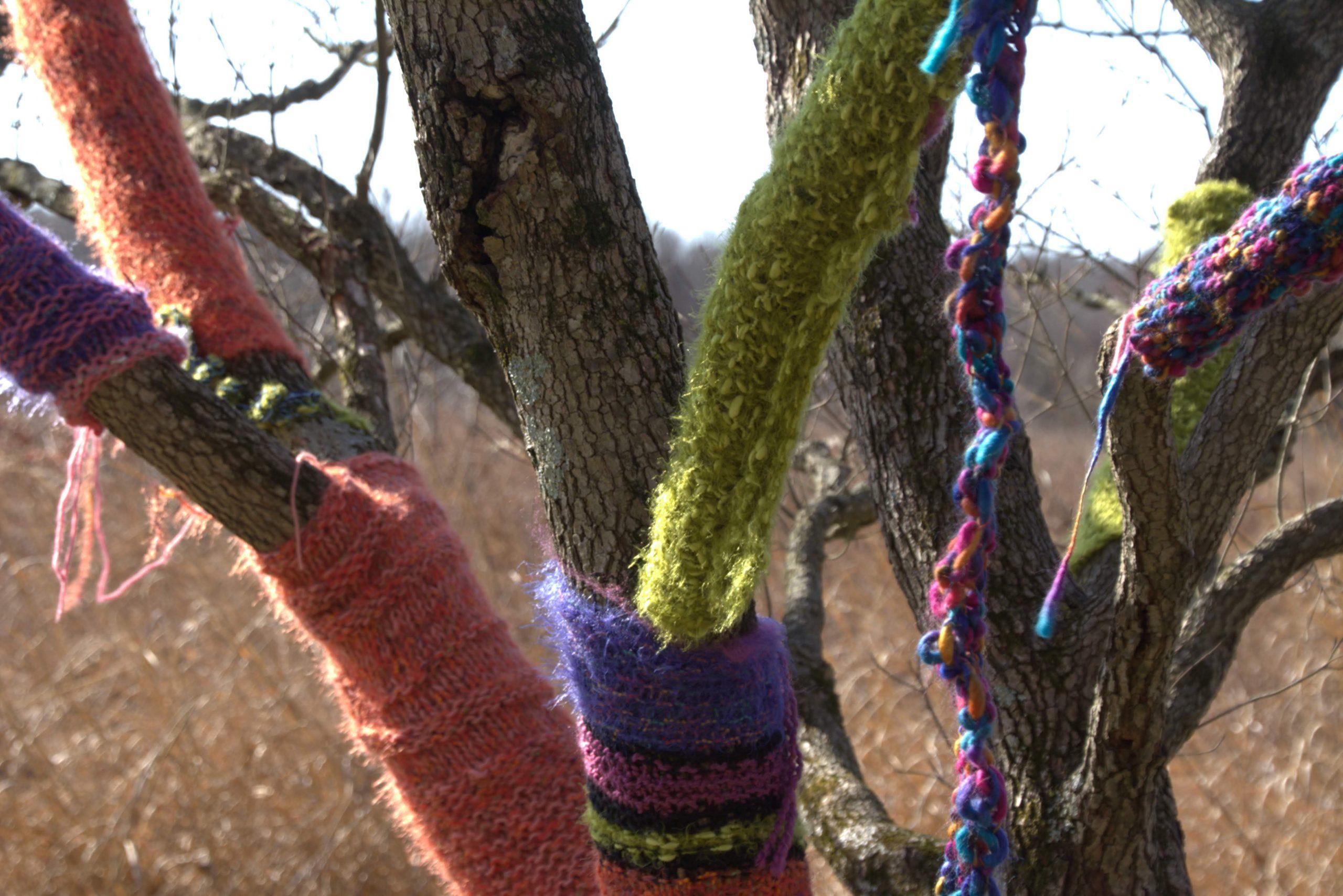 Yarnstorming Returns to Adkins Arboretum